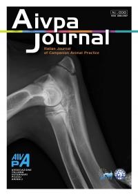 Aivpa Journal anno 2013 numero 1