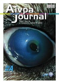 Aivpa Journal anno 2013 numero 3