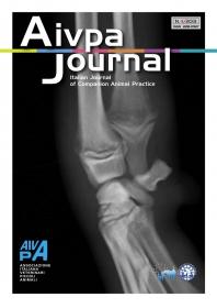 Aivpa Journal anno 2013 numero 4
