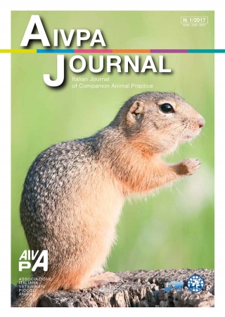 Aivpa Journal anno 2017 numero 1