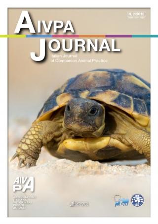 Aivpa Journal anno 2018 numero 2